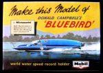 Bluebird packet Autocraft